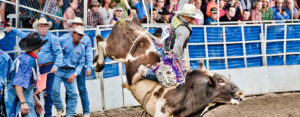 Steamboat Springs Pro Rodeo Series @ Brent Romick Rodeo Arena | Steamboat Springs | Colorado | United States