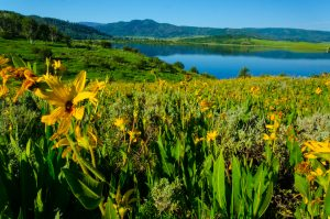 Steamboat Springs Running Series @ Various Locations | Steamboat Springs | Colorado | United States